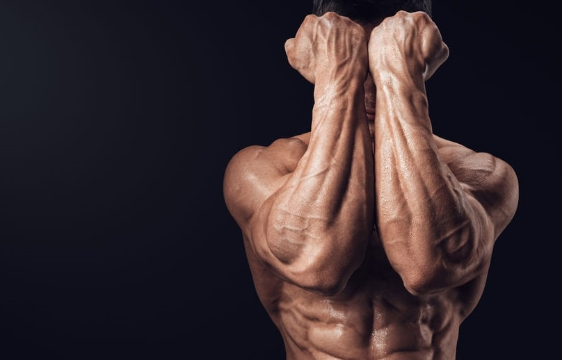 Benefits of boosting your Testosterone levels Muscle building